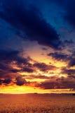 Puesta del sol en campos en verano Imágenes de archivo libres de regalías