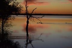 Puesta del sol en Cedar Hill State Park en Tejas foto de archivo