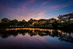 Puesta del sol en Charles River Esplanade, en Beacon Hill, Boston, M foto de archivo