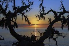 Puesta del sol en colinas del diablo de la matanza, NC Imagen de archivo