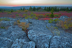Puesta del sol en Dolly Sods Wilderness Fotos de archivo libres de regalías