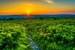 Puesta del sol en Dolly Sods Wilderness, bosque del Estado de Monongahela, nosotros Imagenes de archivo