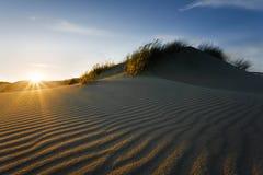 Puesta del sol en dunas Imagen de archivo