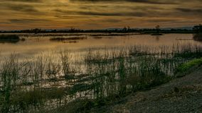 Puesta del sol en el área de Gray Lodge Wildlife, Pennington, California, foto de archivo