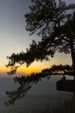 Puesta del sol en el acantilado, con las siluetas del hombre y del árbol Imagenes de archivo