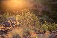 Puesta del sol en el barranco Foto de archivo libre de regalías