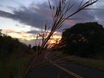 Puesta del sol en el barranco de Waimea en la isla de Kauai, Hawaii; Isla de Niihau en horizonte imagen de archivo libre de regalías