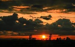 Puesta del sol en el bosque Imagen de archivo