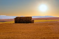 Puesta del sol en el camino a Santiago en Navarra Fotografía de archivo libre de regalías
