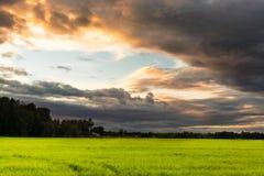 Puesta del sol en el campo con las nubes oscuras en tonelada dramática Imagen de archivo libre de regalías