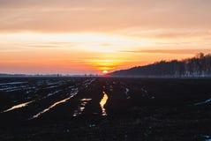 Puesta del sol en el campo de la turba, primavera temprana, Fotografía de archivo libre de regalías