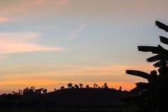 Puesta del sol en el campo del arroz Fotos de archivo libres de regalías