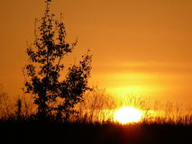 Puesta del sol en el campo en Ucrania fotografía de archivo libre de regalías