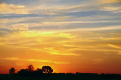 Puesta del sol en el campo Siluetas de árboles Imagenes de archivo