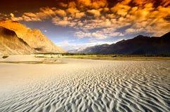 Puesta del sol en el desierto Imagen de archivo