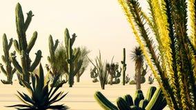 Puesta del sol en el desierto con la representación de los cactus 3d