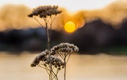 Puesta del sol en el equinoccio imagen de archivo libre de regalías