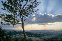 Puesta del sol en el fondo de la naturaleza de la tarde Imágenes de archivo libres de regalías