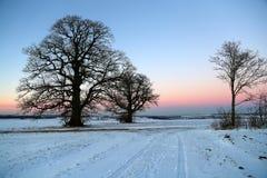 Puesta del sol en el invierno Foto de archivo