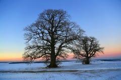 Puesta del sol en el invierno Foto de archivo libre de regalías