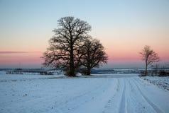 Puesta del sol en el invierno Imagen de archivo libre de regalías