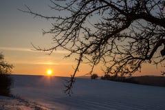 Puesta del sol en el invierno Fotos de archivo