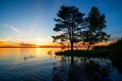 Puesta del sol en el lago con el pino y el abedul grandes Imagenes de archivo