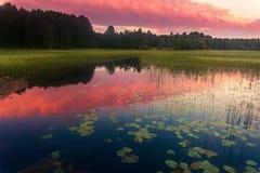 Puesta del sol en el lago Kenozero Imágenes de archivo libres de regalías