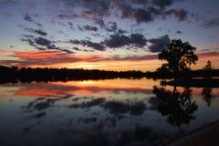 Puesta del sol en el lago Mead con los árboles silueteados Imagen de archivo libre de regalías