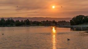Puesta del sol en el lago shoreline Imagen de archivo libre de regalías