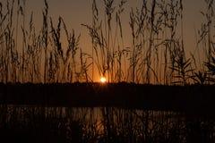 Puesta del sol en el lago tarde fotografía de archivo libre de regalías