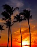 Puesta del sol en el lahaina Imagen de archivo