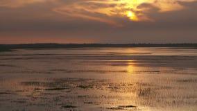 Puesta del sol en el llano del río de Casanare, Wisirare, Colombia almacen de video