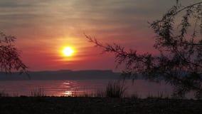 Puesta del sol en el mar de Galilea con el árbol almacen de video