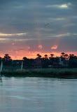 Puesta del sol en el Nilo Imagenes de archivo