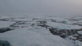 Puesta del sol en el océano entre los icebergs y el hielo en el ártico almacen de metraje de vídeo