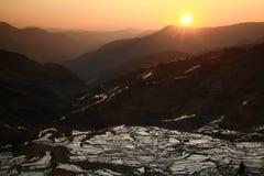 Puesta del sol en el paddyfield de la terraza de Hani Foto de archivo