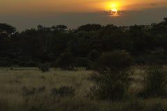 Puesta del sol en el paisaje del oeste Kenia África del parque nacional de Tsavo Fotografía de archivo