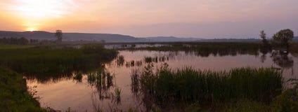 Puesta del sol en el pantano Fotos de archivo libres de regalías