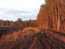 Puesta del sol en el pantano, Lituania Fotografía de archivo libre de regalías