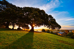 Puesta del sol en el parque de la colina del observatorio Imágenes de archivo libres de regalías