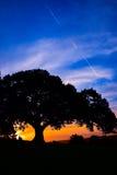 Puesta del sol en el parque de la colina del observatorio Fotografía de archivo libre de regalías