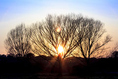 Puesta del sol en el parque del Caffarella Fotos de archivo libres de regalías