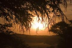 Puesta del sol en el parque internacional de Kgalagadi Imagen de archivo