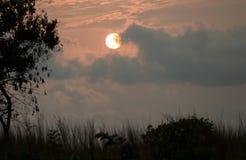 Puesta del sol en el parque nacional de Conkouati Douli, Congo Imagen de archivo