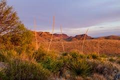 Puesta del sol en el parque nacional de la curva grande Imagen de archivo libre de regalías