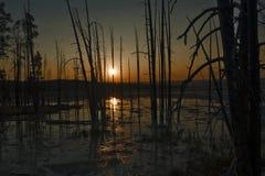 Puesta del sol en el parque nacional de Yellowstone, Wyoming, los E.E.U.U. foto de archivo