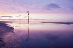 Puesta del sol en el puerto del bacalao de cabo Imagen de archivo libre de regalías
