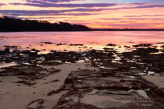 Puesta del sol en el punto NSW Australia de la plantación imagen de archivo libre de regalías