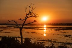 Puesta del sol en el río del chobe en Botswana foto de archivo